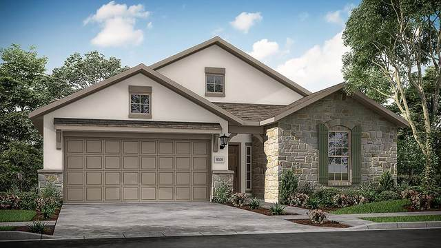138 Mistflower Path, Montgomery, TX 77316 (MLS #28774130) :: Connect Realty