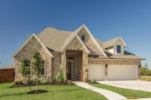 10006 Hooke Drive, Iowa Colony, TX 77583 (MLS #28870428) :: Green Residential