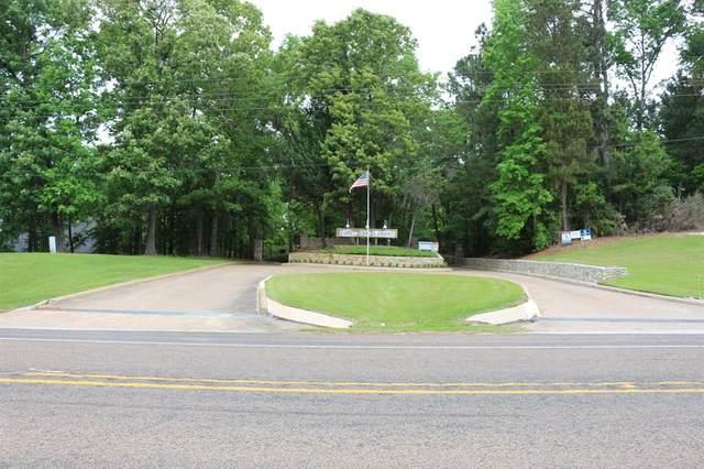 TBD Lake Oaks Circle, Coldspring, TX 77331 (MLS #28898341) :: Lerner Realty Solutions