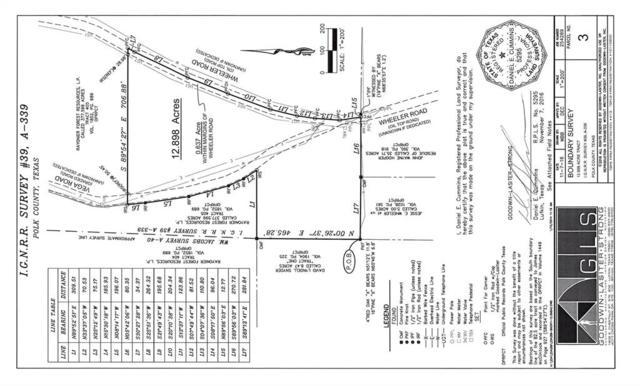 12.898 Ac Vega Road, Wheeler Road, Corrigan, TX 75939 (MLS #28976147) :: Christy Buck Team