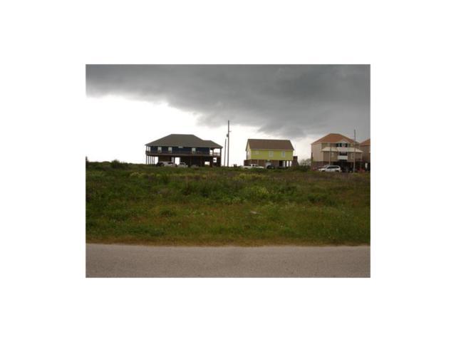 1136 Gulfview, Crystal Beach, TX 77650 (MLS #28996983) :: Christy Buck Team