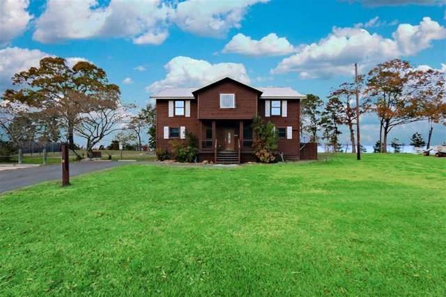 4465 Carter's Ferry Road E, Milam, TX 75959 (MLS #29097633) :: Texas Home Shop Realty