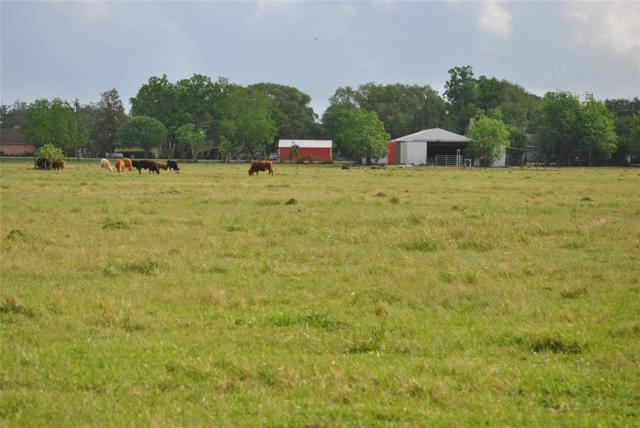 000 County Road 416, Brazoria, TX 77422 (MLS #29128339) :: The SOLD by George Team