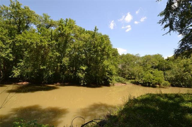 1315 Woodvine, Friendswood, TX 77546 (MLS #29143903) :: Caskey Realty