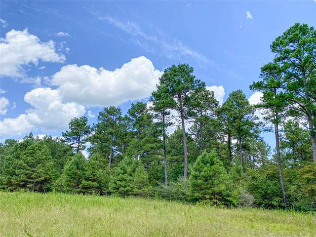 0 Cr 4250, Lovelady, TX 75851 (MLS #2922547) :: The Freund Group