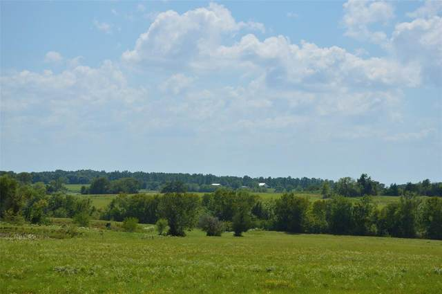 0031 Fm 149 - 31 Acres Road E, Anderson, TX 77830 (MLS #29338276) :: The Bly Team