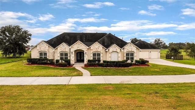 2919 Pearce Lane, Rosharon, TX 77583 (MLS #29338341) :: TEXdot Realtors, Inc.