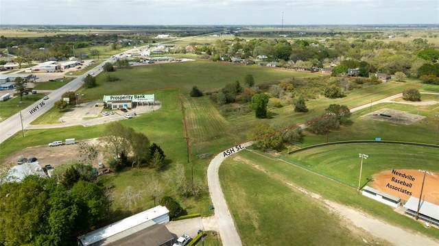 00 Highway 36, Needville, TX 77461 (MLS #29348418) :: Guevara Backman