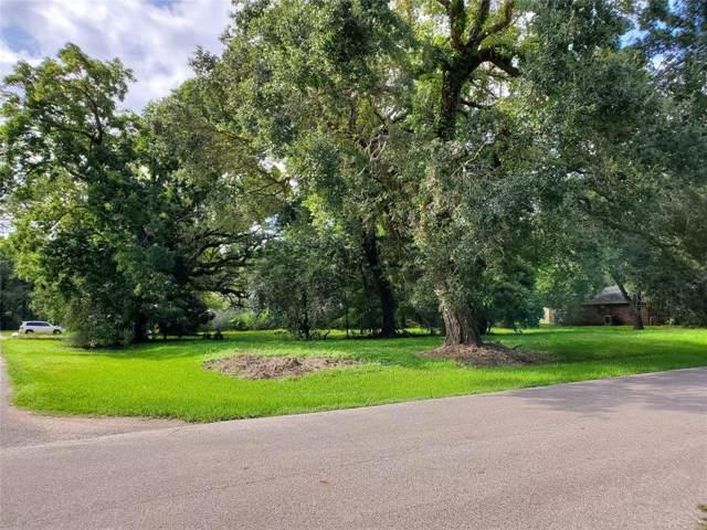0 Spencer P8 Drive, Jones Creek, TX 77541 (MLS #29360355) :: The Queen Team
