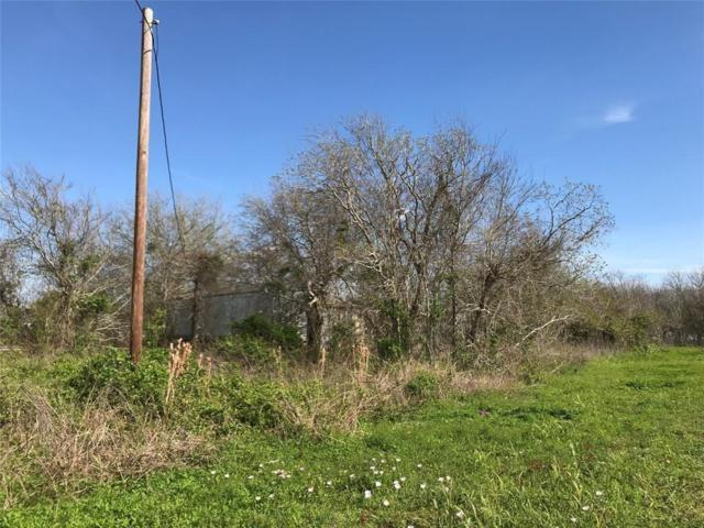 0 County Road 469, Brazoria, TX 77422 (MLS #29368716) :: The SOLD by George Team