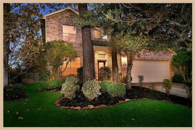 22 Ebony Oaks Place, The Woodlands, TX 77382 (MLS #29384944) :: Carrington Real Estate Services