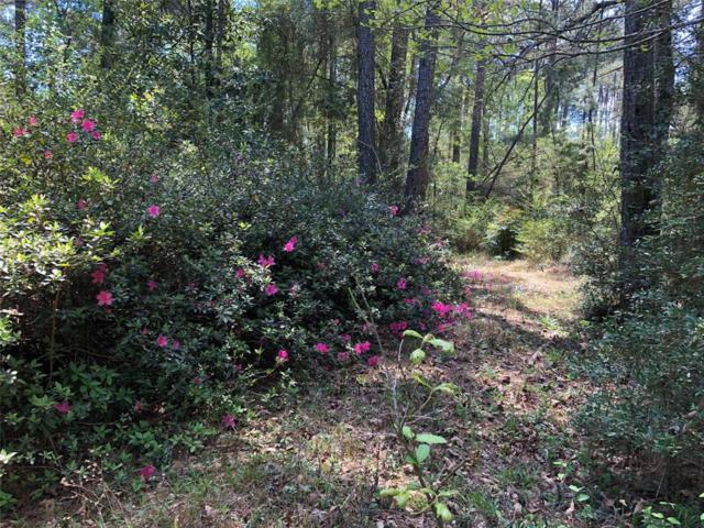 8140 W Fm 150 Highway, Coldspring, TX 77331 (MLS #29386885) :: Magnolia Realty