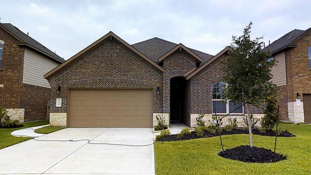 1210 Hidden Grove Lane, Rosenberg, TX 77471 (MLS #29415574) :: NewHomePrograms.com LLC
