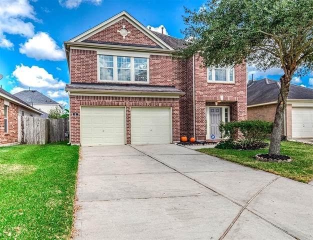 6 Wheeler Ridge Circle, Manvel, TX 77578 (MLS #29497929) :: Christy Buck Team