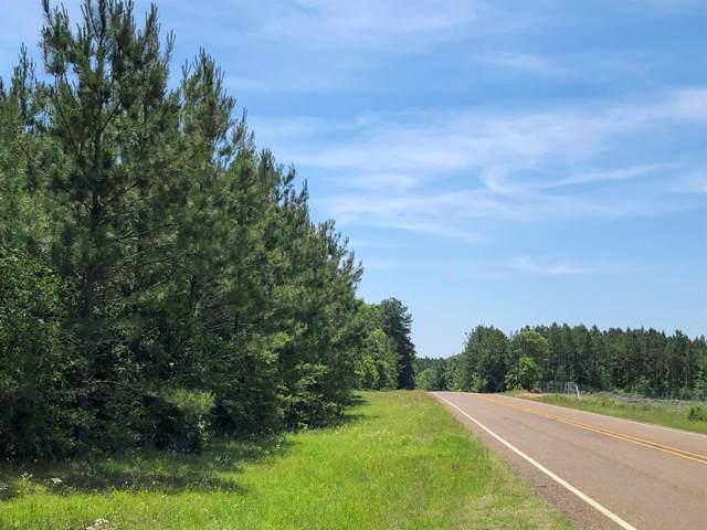 000 Fm 2991, Burkeville, TX 75932 (MLS #29530388) :: Texas Home Shop Realty