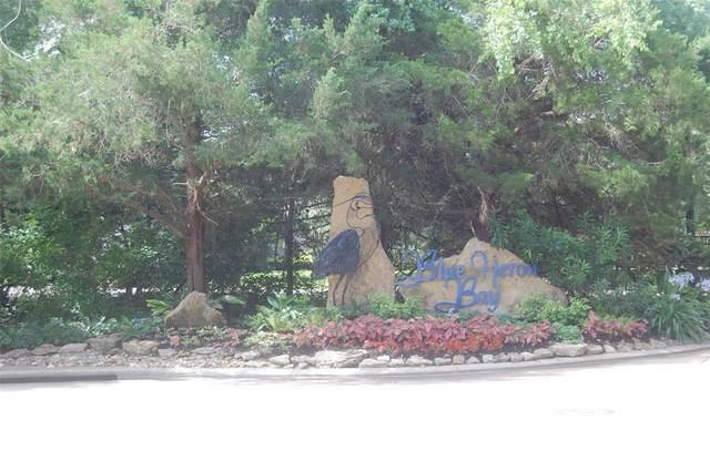 329 Blue Heron Drive, Montgomery, TX 77316 (MLS #29580137) :: Michele Harmon Team