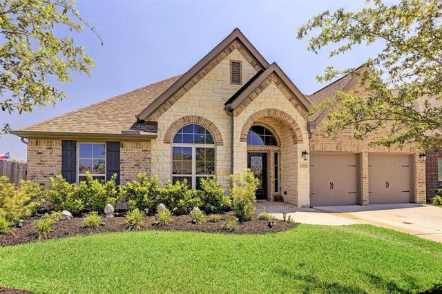 13602 Lightning Falls Lane, Pearland, TX 77584 (MLS #29586173) :: Christy Buck Team
