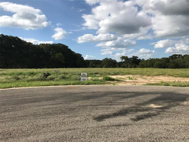4299 Eli Road, Bellville, TX 77418 (MLS #29649646) :: Connect Realty