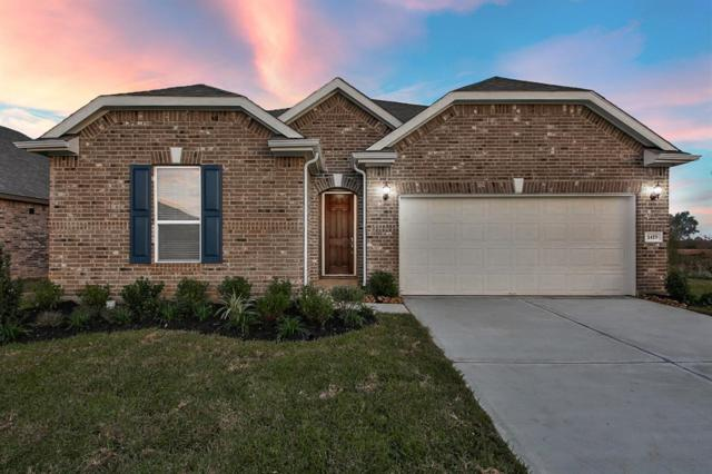 1419 Buffalo Woods Court, Katy, TX 77494 (MLS #29670273) :: JL Realty Team at Coldwell Banker, United