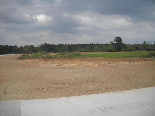 36670 High Meadow Industrial Lane, Magnolia, TX 77354 (MLS #29679609) :: Fairwater Westmont Real Estate