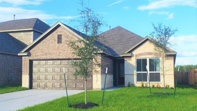 2510 Oakleaf Ash Lane, Fresno, TX 77545 (MLS #29768957) :: Fairwater Westmont Real Estate