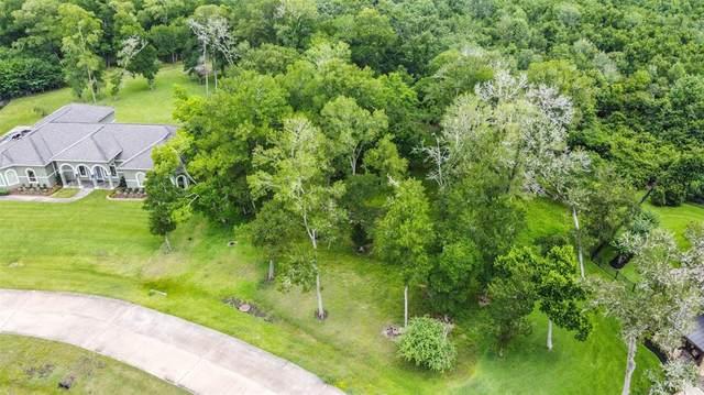 210 Royal Lakes Manor Boulevard, Richmond, TX 77469 (MLS #29816238) :: Guevara Backman