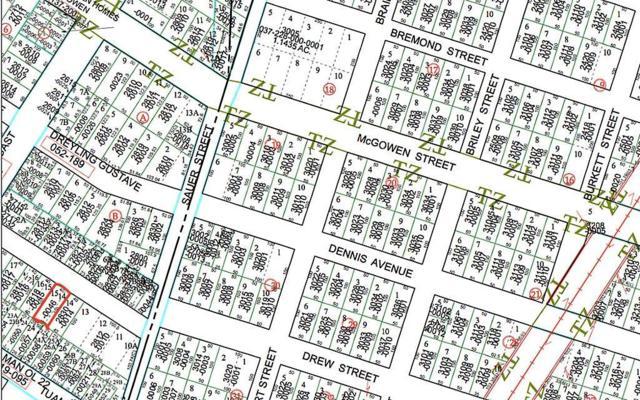 2822 Drew Street, Houston, TX 77004 (MLS #29841714) :: Texas Home Shop Realty