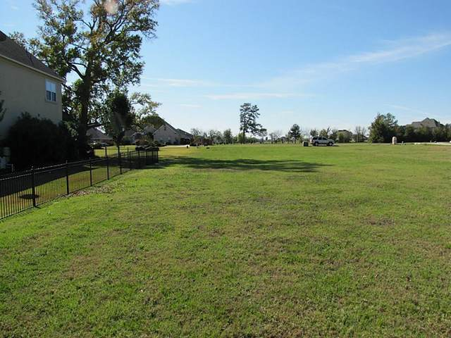 18863 Serene Water Drive, Montgomery, TX 77356 (MLS #2988861) :: All Cities USA Realty