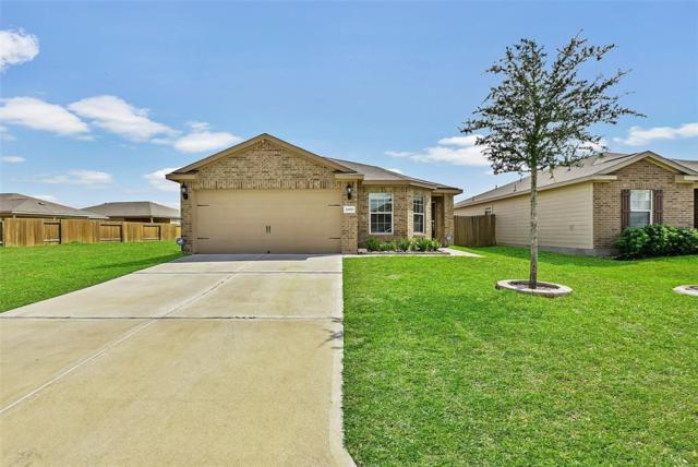 24630 Cypresspark Glen Lane, Hockley, TX 77447 (MLS #29901116) :: Texas Home Shop Realty