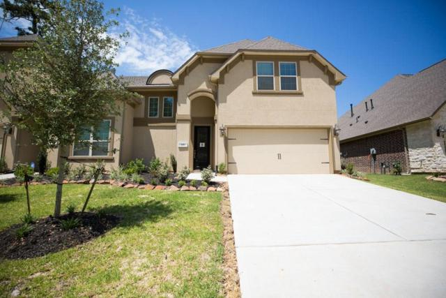 119 Skybranch Drive, Conroe, TX 77304 (MLS #29949500) :: The Queen Team