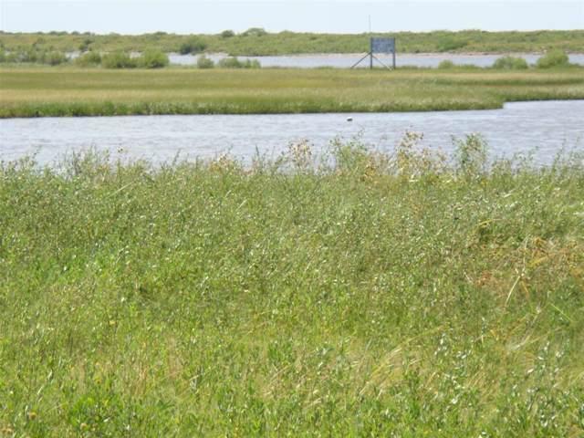 1321 Lagoon Drive, Crystal Beach, TX 77650 (MLS #30204506) :: Ellison Real Estate Team