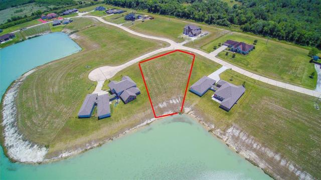 27918 S Shore Court, Rosharon, TX 77583 (MLS #30214133) :: The SOLD by George Team