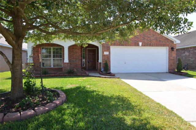 24930 Sandusky Drive, Tomball, TX 77375 (MLS #3038252) :: Team Parodi at Realty Associates