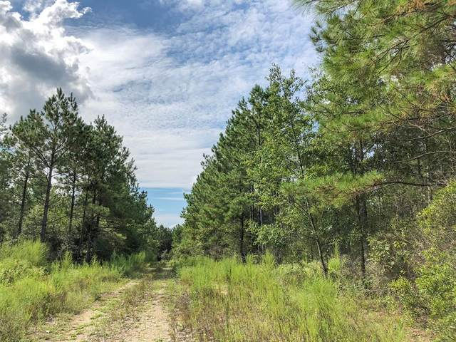00000 County Road 4280, Woodville, TX 75979 (MLS #30459699) :: Connect Realty