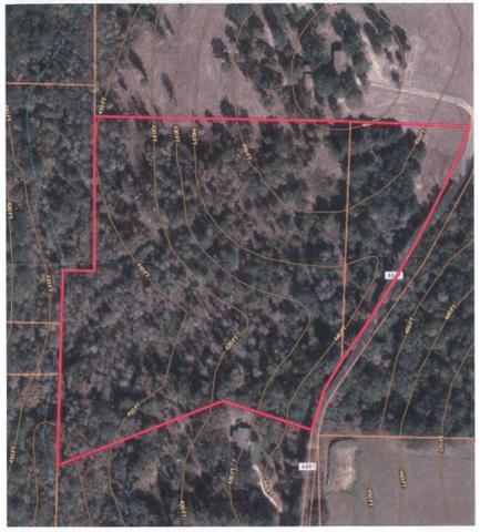 00 An County Road 4441, Neches, TX 75779 (MLS #30463503) :: Texas Home Shop Realty