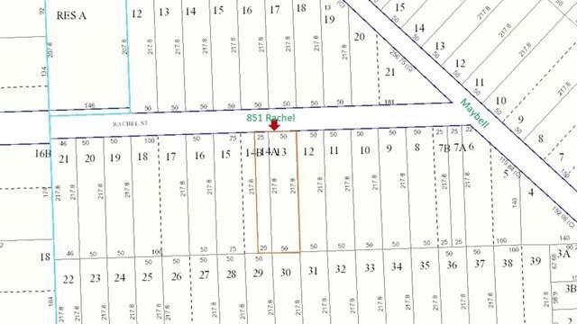 851 Rachel Street, Houston, TX 77091 (MLS #30507292) :: The Parodi Team at Realty Associates