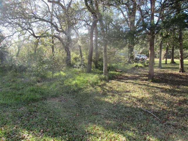 8 & 9 Prince Valiant Drive, Sargent, TX 77414 (MLS #30599494) :: Connell Team with Better Homes and Gardens, Gary Greene