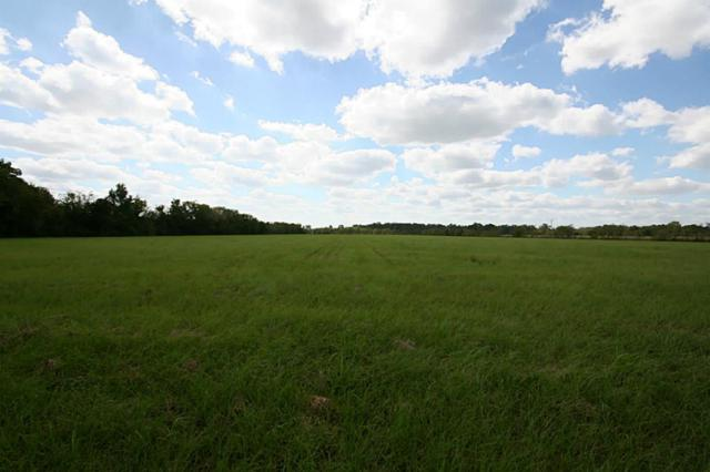 000 Huffman Eastgate Road, Huffman, TX 77336 (MLS #30625558) :: Texas Home Shop Realty