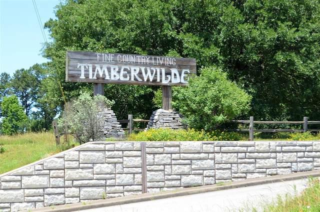 TBD 2-1 Dahlia Road, Huntsville, TX 77320 (MLS #30629267) :: Michele Harmon Team