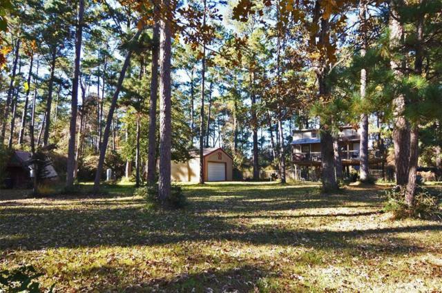 16281 N Loop Drive, Plantersville, TX 77363 (MLS #30692844) :: NewHomePrograms.com LLC