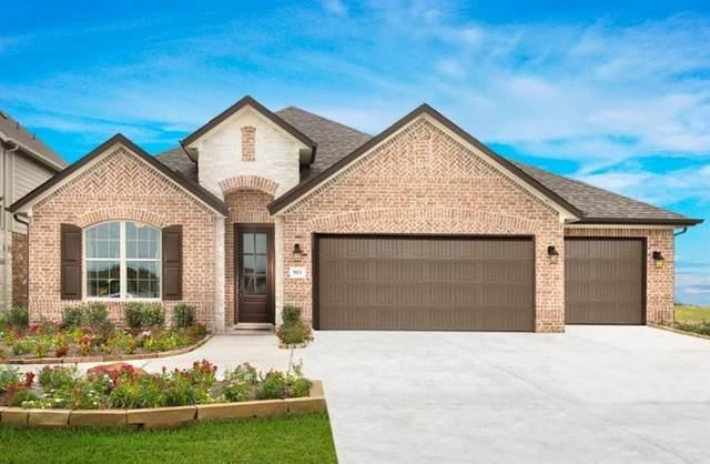 923 Fuchsia Drive, Rosenberg, TX 77469 (MLS #30773729) :: The SOLD by George Team
