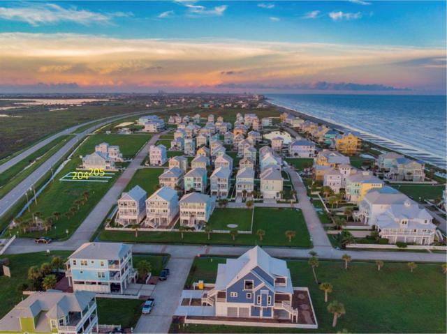 Lot 205 Sea Butterfly, Galveston, TX 77554 (MLS #30800595) :: The Kevin Allen Jones Home Team