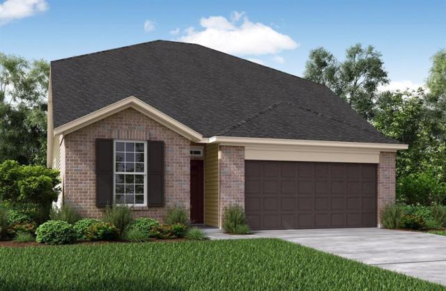 5034 Royal Amber Lane, Katy, TX 77493 (MLS #30961701) :: KJ Realty Group