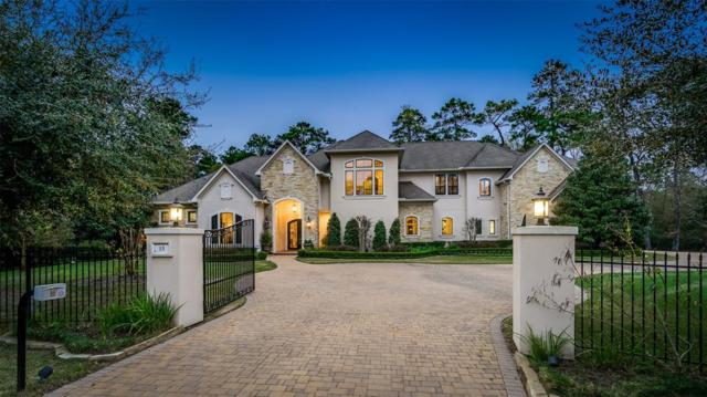 15 Bridle Oak Court, The Woodlands, TX 77380 (MLS #31110392) :: JL Realty Team at Coldwell Banker, United