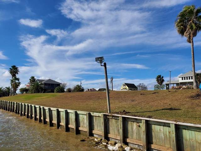 1450 W Bayshore Drive, Palacios, TX 77465 (MLS #31138804) :: Phyllis Foster Real Estate