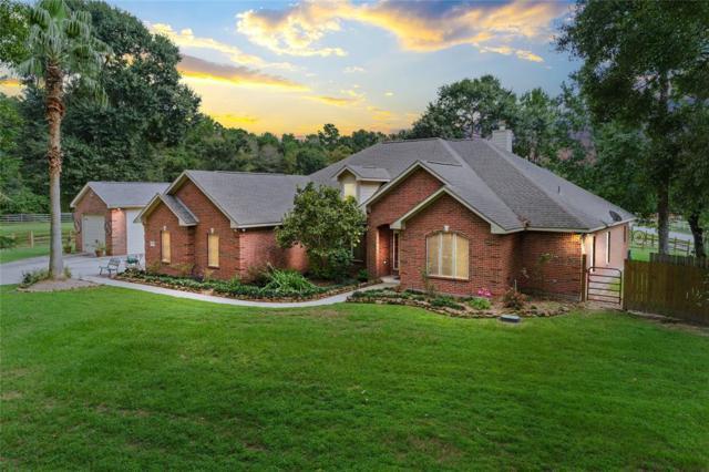 19294 Elbe Drive, Porter, TX 77365 (MLS #31155977) :: Texas Home Shop Realty