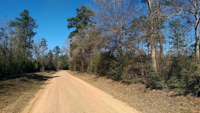 3295 Holly Grove Road, Livingston, TX 77351 (MLS #31186362) :: Christy Buck Team