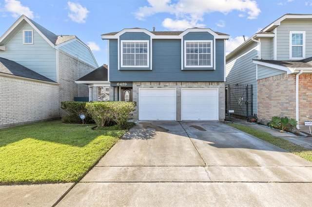 6429 Chatham Island Lane, Houston, TX 77035 (MLS #31187567) :: Lerner Realty Solutions