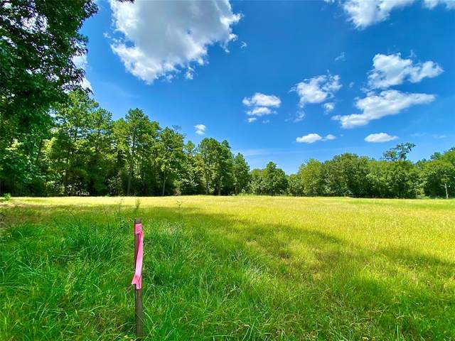 14109 A Horseshoe Bend, Conroe, TX 77384 (MLS #31210680) :: Green Residential