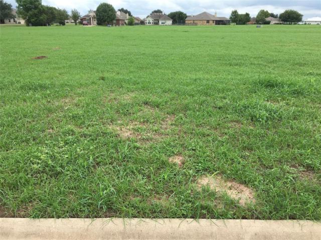 103 Sandpiper Drive, Bastrop, TX 78602 (MLS #31212490) :: Texas Home Shop Realty